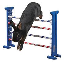 Agilityhinder Combo Jump 53cm