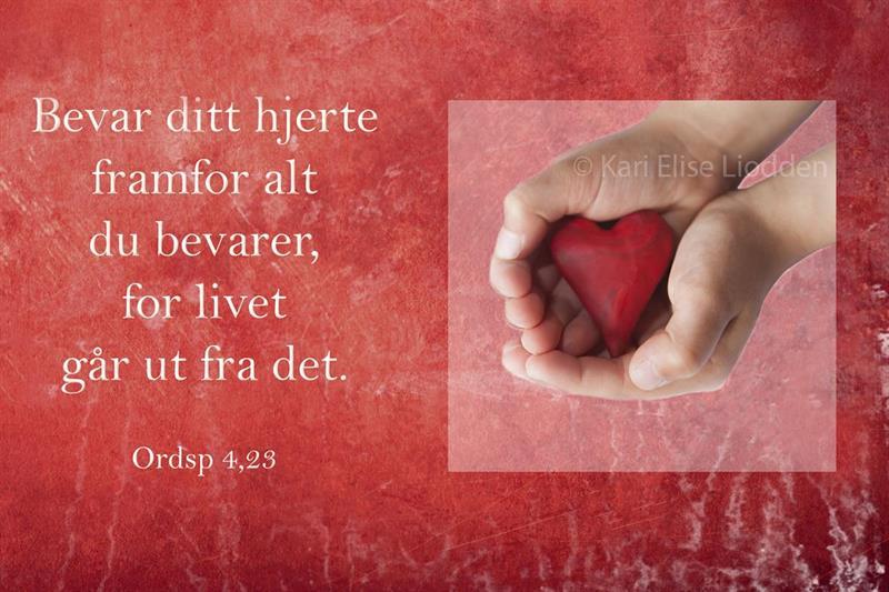 Fotolerret - Bevar ditt hjerte