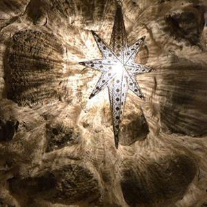 Gripsholm Stjärna