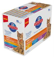 Hills Katt Adult Chunks in Gravy 12x85g