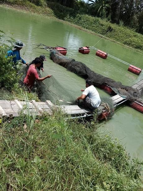 Fiskeanlegg-