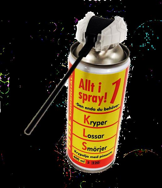 Total Allt i 1 spray