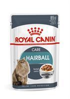 RC FCN Hairball Care Gravy 12x85g