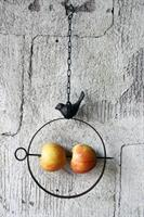 Fågelmatare 22*2*40cm m kedja gjutjärn