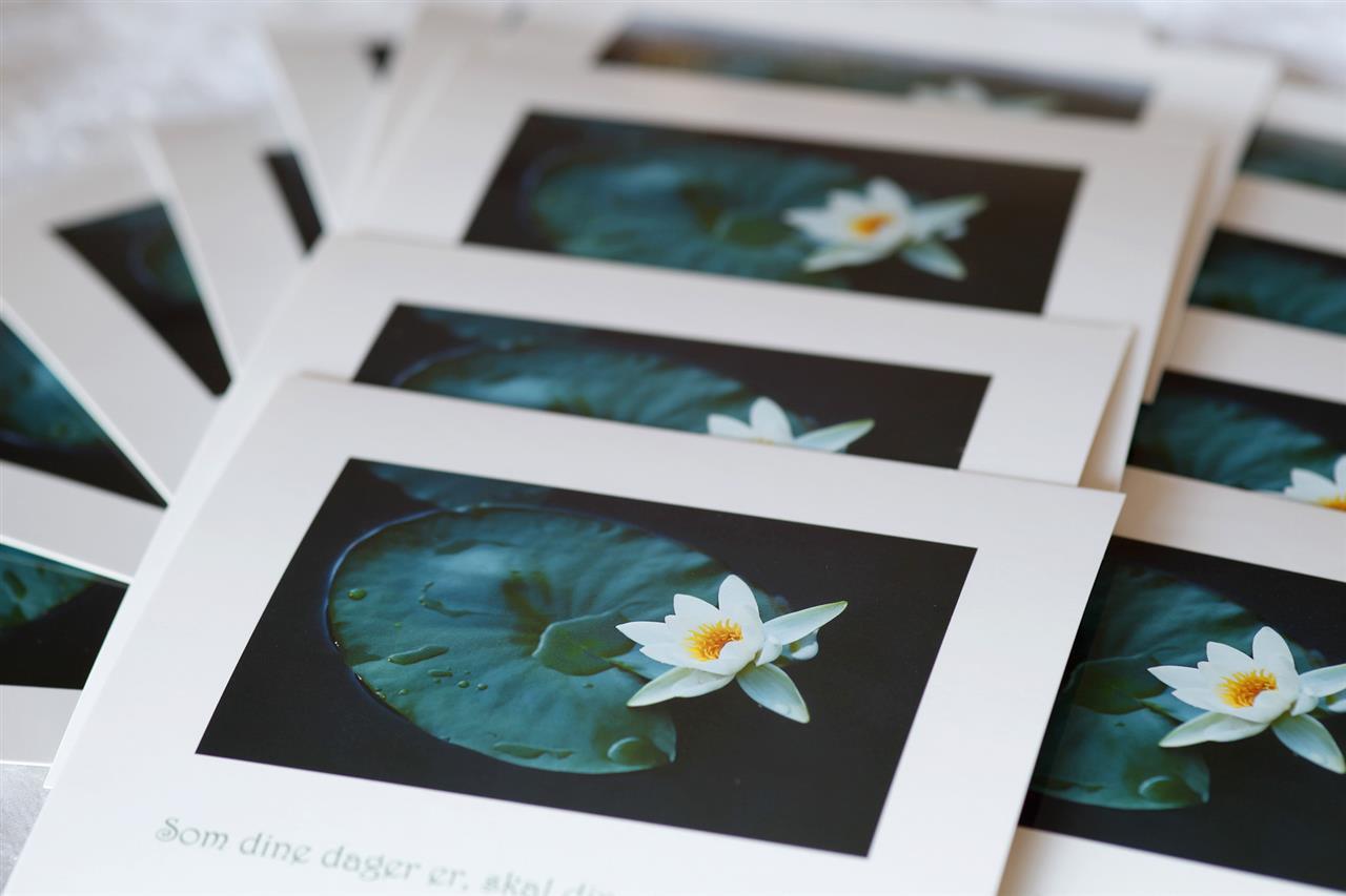 Pakketilbud: 25 like postkort