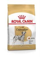 RC Dalmatian Adult 12 kg