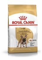 RC French Bulldog Adult 3 kg