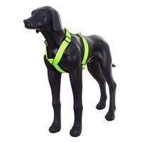 Hundsele Form Rukka Neon Gul XXS 35-55cm 20mm