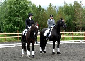 Sølvvinnere NNM dressur klubblag 2012 hest - HAMM