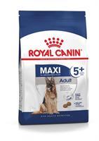 RC Maxi Adult 5+ 15 kg