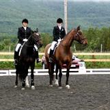 Tromsø Ryttersportsklubbs hestelag