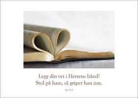 Bibelkort - Legg din vei