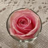 Blomster levert av Amaline.
