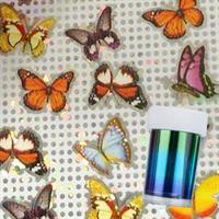 DM- Folie #67 Butterfly