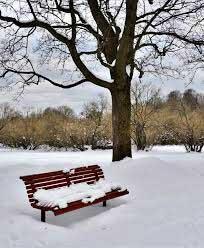Benk i Frognerparken vinter