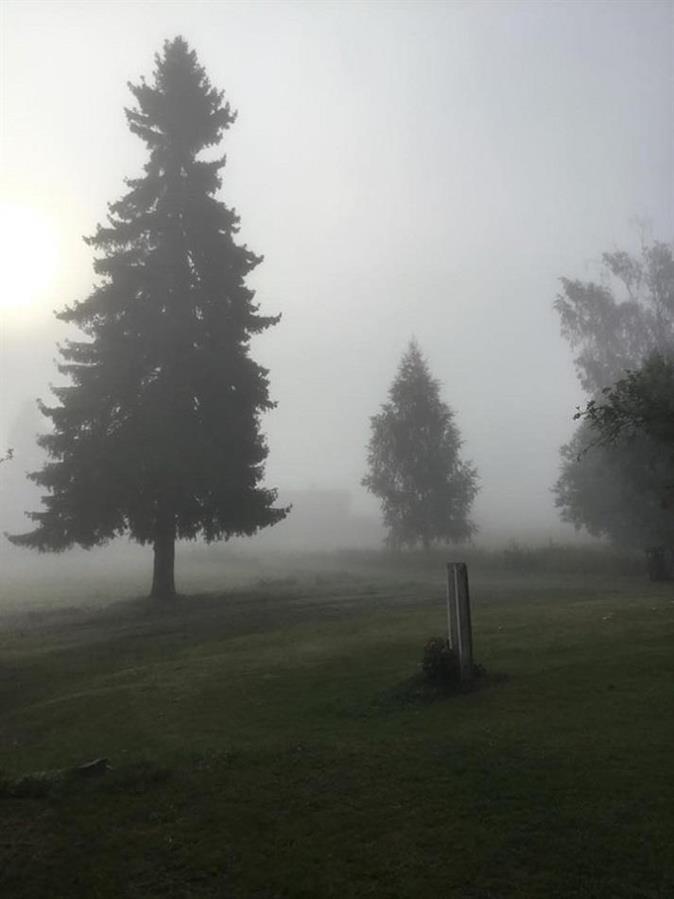 Dimmig och vacker morgon