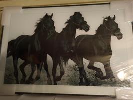 Hevoset taulu