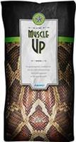 Fibergi MuscleUp 20kg