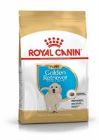 RC Golden Retriever Puppy 12 kg