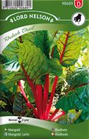 Mangold Rubarb Chard röd
