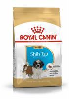RC Shih Tzu Puppy 1,5 kg
