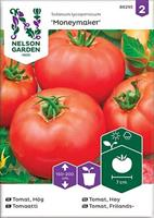 Tomat, Frilands-, Moneymaker -