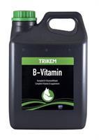 B-Vitamin Vimital 2,5l
