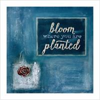 Kunstkort - Bloom where you are planted