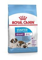 RC GIANT Starter 15 kg