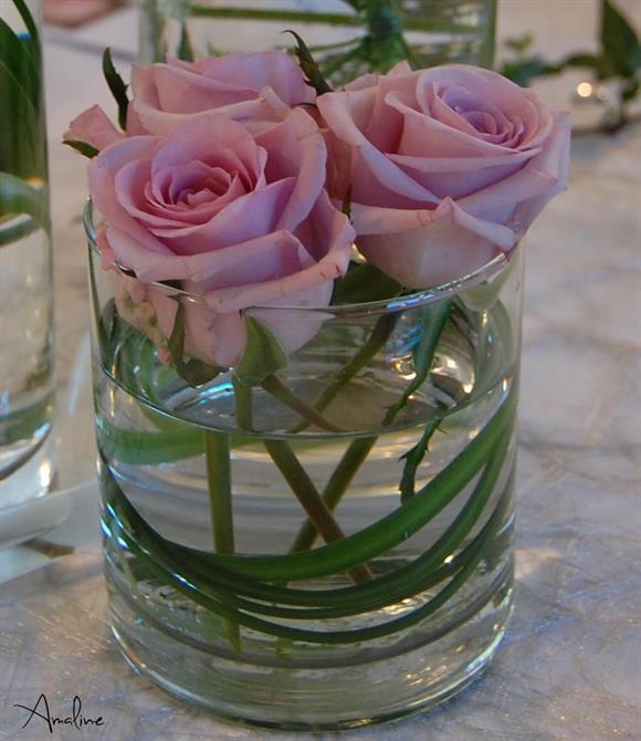 Blomster: Amaline