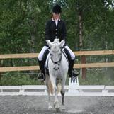 Karina Bull Skoglund/Finesse Van De Pronkenberg