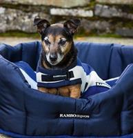 Hundtäcke Rambo Deluxe Witney Navy XXS