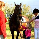 Lille Ronja vil leie hesten