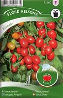 Tomat, Ampel-, Romello F1