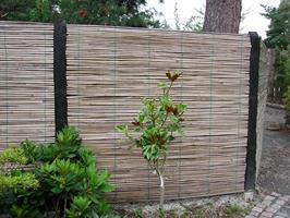 Vindskydd Rund Bambu 0,9*2m