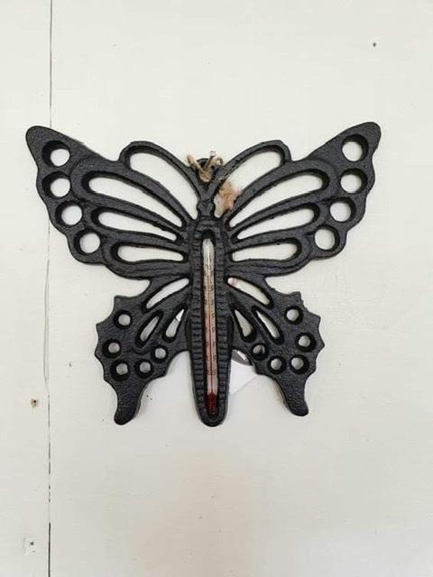 Termometer fjäril