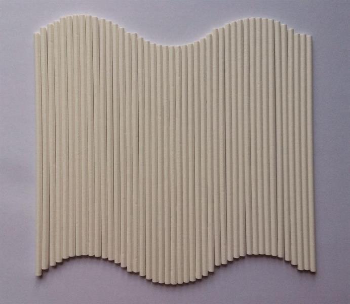 Cake-/Lollipop pinner 500stk, 15cm