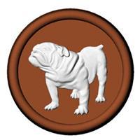 Plastform CK Bulldog