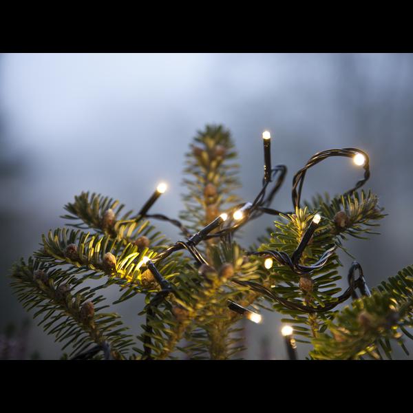 Ljusslinga serie micro LED svart sladd 9m Star Tra