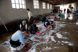 12 teppevaskeri utenfor Teheran
