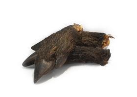 Vildsvinsklöv halv (torkad)