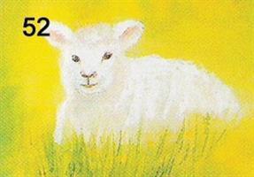 Valkoinen lammas-kortti