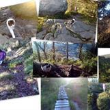 Kattevandreren og pus på tur mot ett av Bergens 7 fjell, Løvstakken