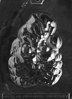 Plastform Nissefjes leende LP