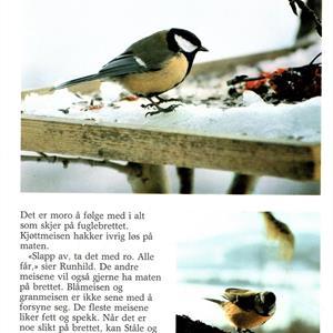 Fuglehjelperne