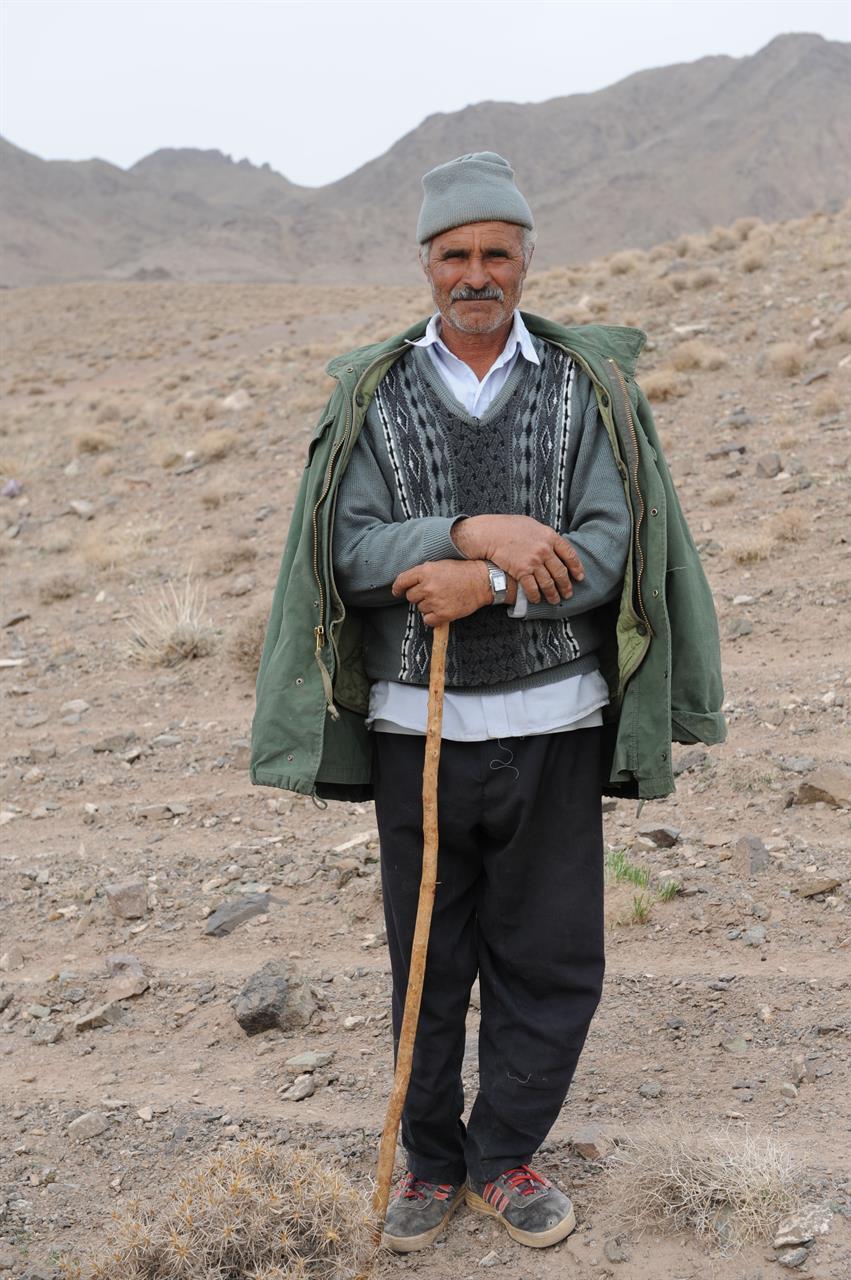 Gjeter på landsbygda i Iran