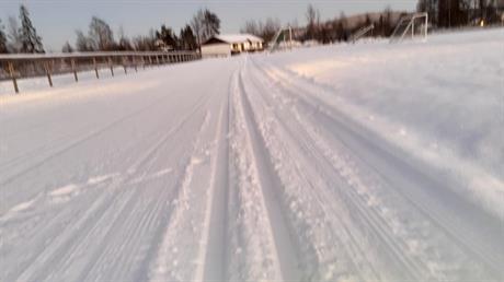 Skispor