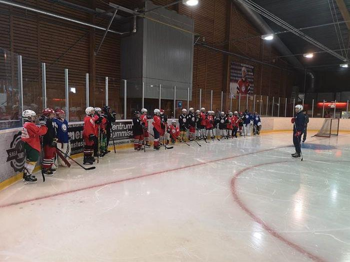 Velkommen til Nes IK`s sommerhockey 2021!