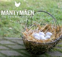 Kananmunat koko M, valkoinen 30 kpl, luomu