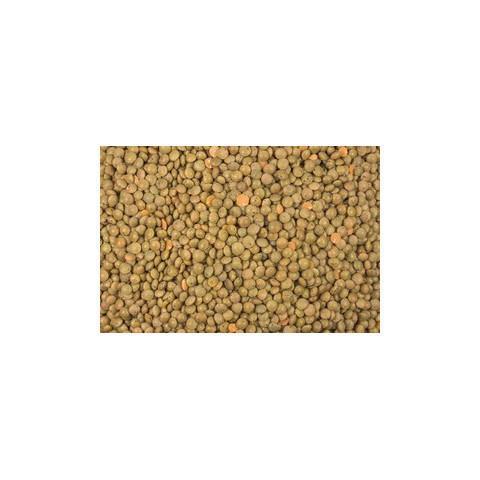 Ruskea linssi kokonainen 1 kg, luomu
